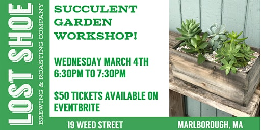 Succulent Garden Workshop