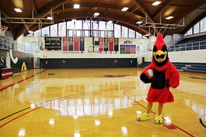 VIP Cardinal Alumni Tailgate for Battle of the Beaks