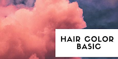 Hair Color Basic - Aprile biglietti