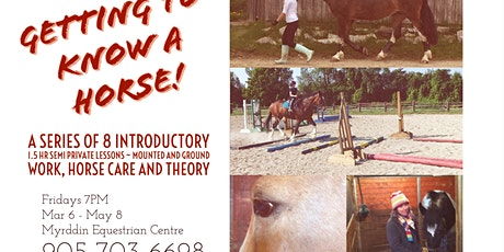 Getting to Know a Horse - Lesson Series tickets