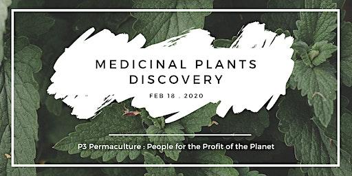 Medicinal Plants Discovery Workshop