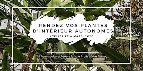 Rendez vos plantes d'intérieur autonomes billets