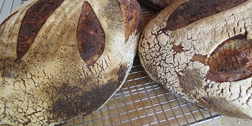 Intro to Sourdough with Brot Bakery