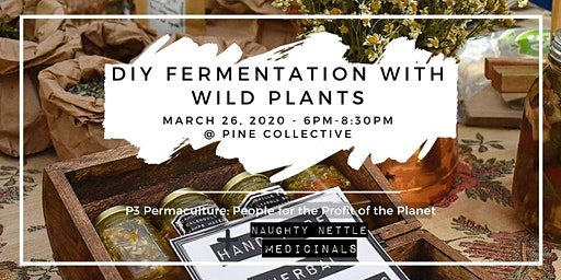 DIY Fermentation with Wild Plants
