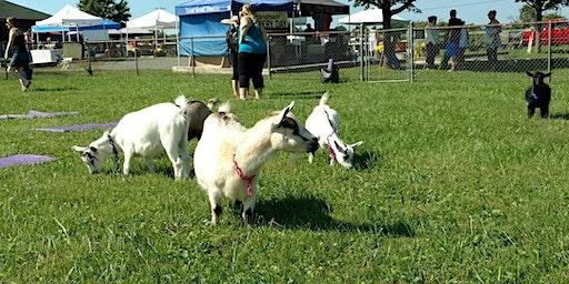 Goat Yoga & Sunday Farmers Market