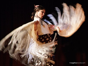 OPENING NIGHT CHICAGO FLAMENCO FESTIVAL - NEW MOON WITH LUNA FLAMENCA tickets