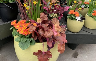 Early Spring Containers