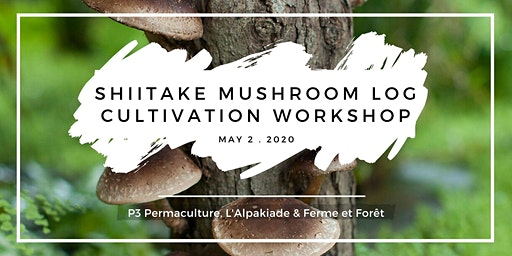 Shitake Mushroom Log Cultivation Workshop