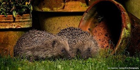 Improve your Garden for Wildlife tickets