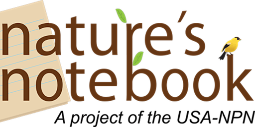 Nature's Notebook Citizen Science Workshop at the Mission Garden