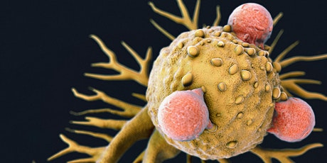 Driving Towards New CAR-T Cell Applications and Productive Peer Review tickets