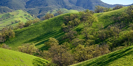 Special Guided Walk at Magee Preserve - Sunday Feb 16-YES on Measure Y tickets