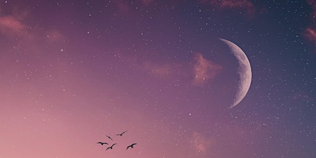 Sacred Sister Circle:  New Moon & Prosperity tickets