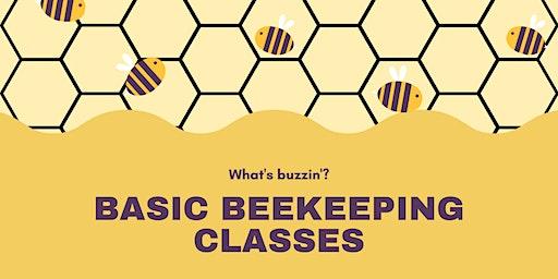 FOTBS Basic Beekeeping Classes