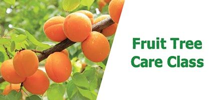 Fruit Tree Care Class