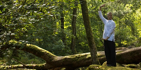 Qigong Workshop: Generating Energy Flow for Health and Vitality tickets