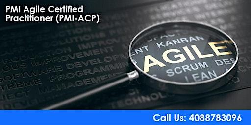 PMI-ACP (PMI Agile Certified Practitioner) Training in San Francisco