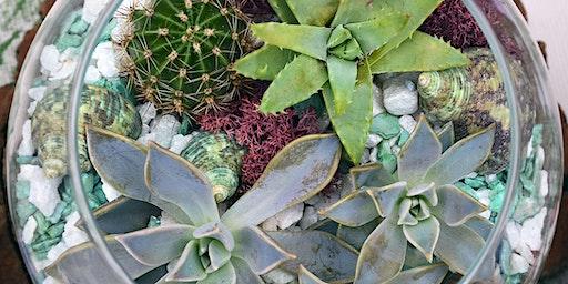 Open Succulent and Cacti Terrarium Workshop