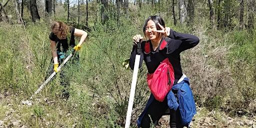 Rogue River Preserve Spring Stewardship Day
