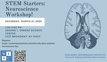 STEM Starters workshop: Neuroscience Day