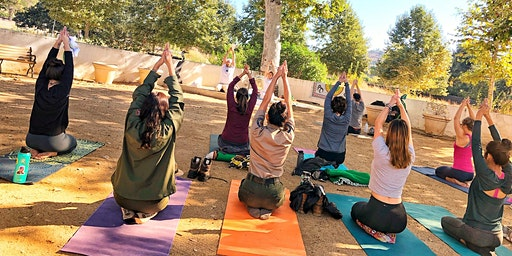 Yoga on the Mountain