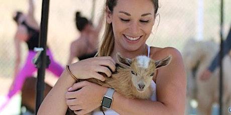 Goat Yoga Excursion tickets