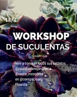 WORKSHOP DE SUCULENTAS