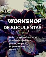 WORKSHOP DE SUCULENTAS