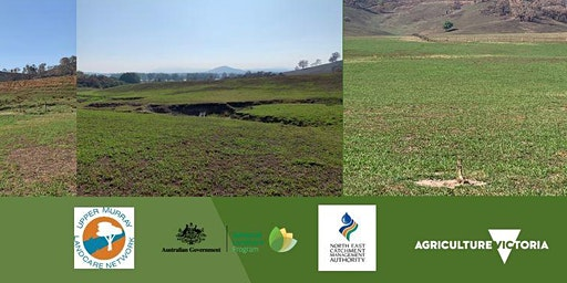 Pasture Recovery after Fires - Cudgewa Workshop