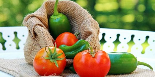 Terrific Tomatoes & Perfect Peppers