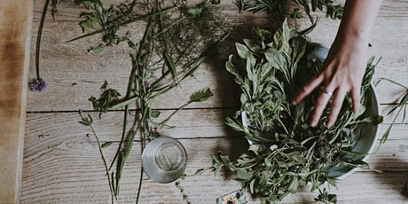 TOV EARTH - MODULE I: Herbs For Organ Health with Shoshana Weinberg tickets