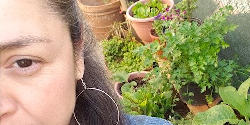Plant Medicine: Nurturing Nature for Self-sustainability & Self-healing w /Melissa Gutierrez