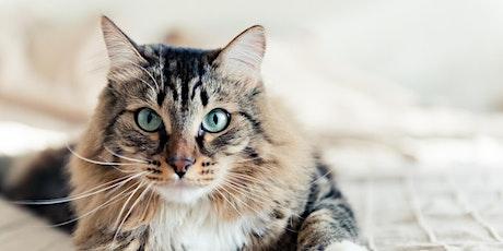 Soirée de formation en biologie vétérinaire tickets