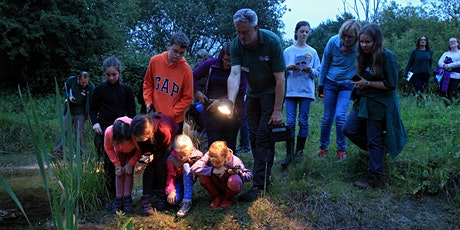 Family Workshop: Night-time Safari at Sutton Courtenay tickets