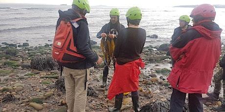 Sustainable Seasonal Seaweed tickets