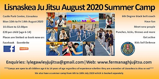 Lisnaskea Ju Jitsu August 2020 Summer Camp