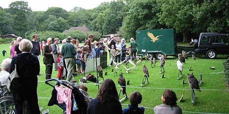 Birds of Bray Bird of Prey Day tickets