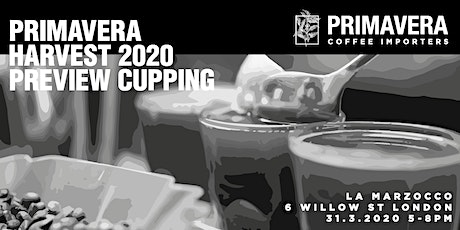 Primavera harvest 2020 preview cupping tickets