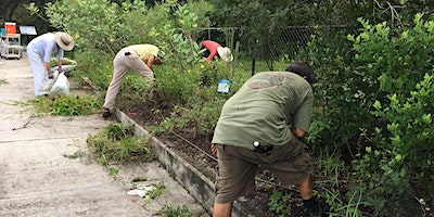 Manatee Park Butterfly Garden Cleaning