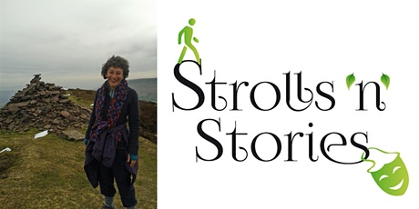 Tintern Mirrors: A storytelling Stroll into the Abbey and Surrounding Area tickets