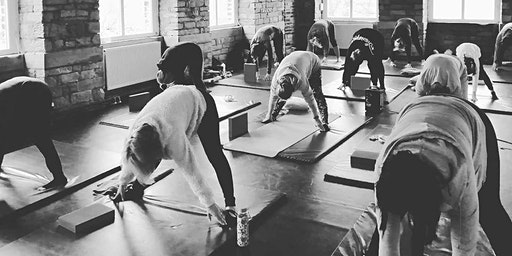 Turtle Yoga Thursdays (beginners)