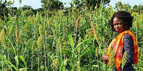 'Indigeneity, agroecology and the SDGs. A case example of ETFE Uganda tickets