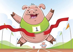 Family Pig Racing Fun!