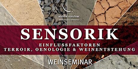Weinseminar – Sensorik – Einflussfaktoren – Terroir, Oenologie & Weinentstehung Tickets