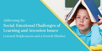 Addressing the Social-Emotional Challenges of Learning and Attention Issues