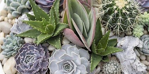 Make it & Take it: Mix it Up Succulent & Cactus Garden