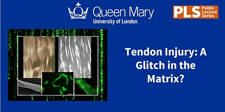 Tendon Injury: A glitch in the Matrix with Professor Hazel Screen tickets