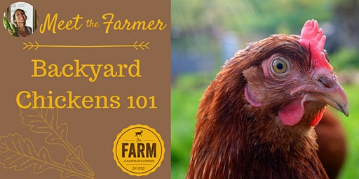 Meet the Farmer: Backyard Chickens 101