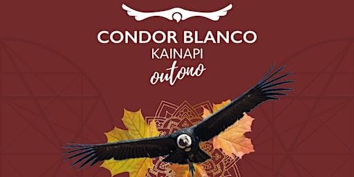 Kainapi de Estação - Outono 2020 - Florianópolis