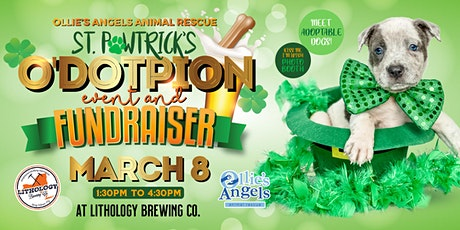 St. Pawtrick's O'doption Event & Fundraiser tickets